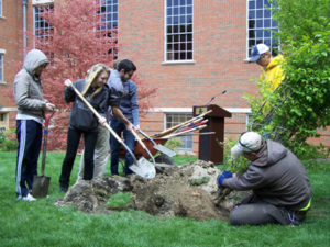 Emhurst College students plant a tree on Arbor Day.