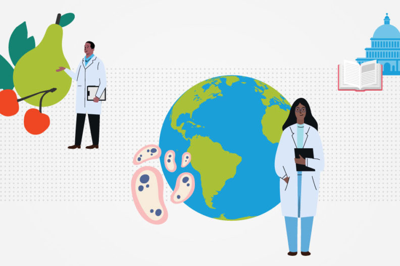 A public health degree opens the door to careers in research, medicine, teaching and policymaking.
