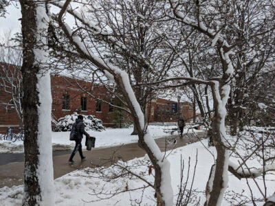 A student in a winter cap and coat walks a path on the campus of Elmhurst University, framed by snow-covered tree branches.