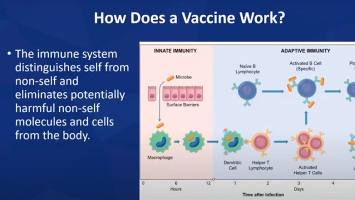 "Thumbnail link to the webinar video ""Demystifying the COVID-19 Vaccines."""
