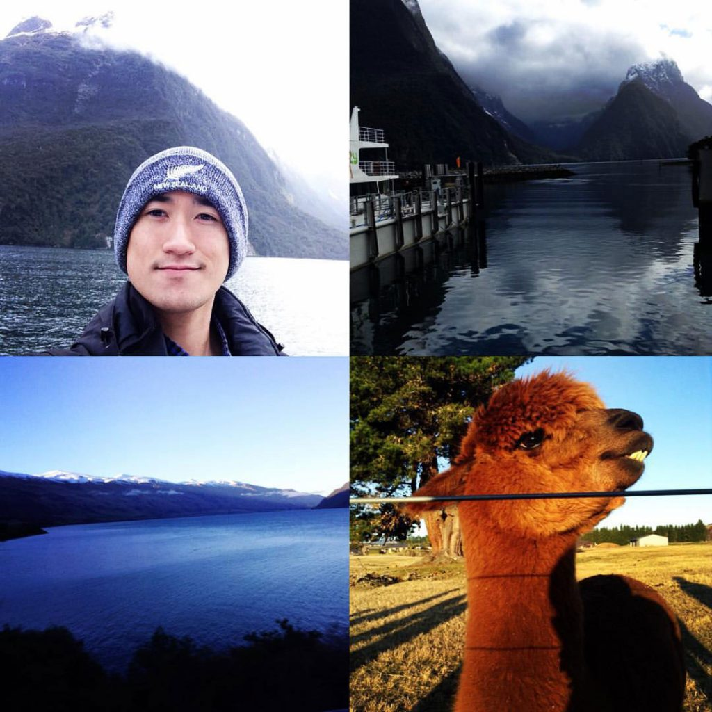 Elmhurst University alumnus Allen Riquelme shares a photo montage from his travels, including a llama and a mountain shrouded in mist.