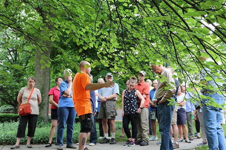 A group gathers under a tree for a tour of Elmhurst University's arboretum.
